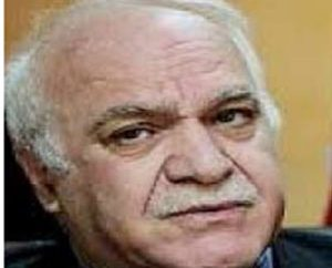 صعود الطبقة الوسطى وانحدارها / مظهر محمد صالح